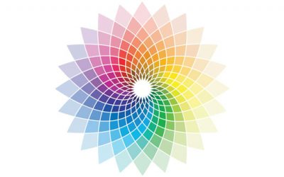 Colour theory strengthens your brand